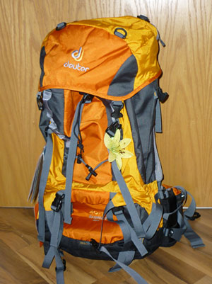 2010-01-23_backpack